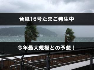 2019年台風16号のたまごの進路予想!